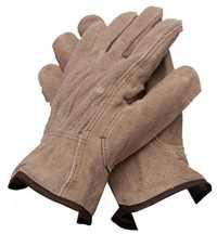 PSG20352,Gloves,Proselect